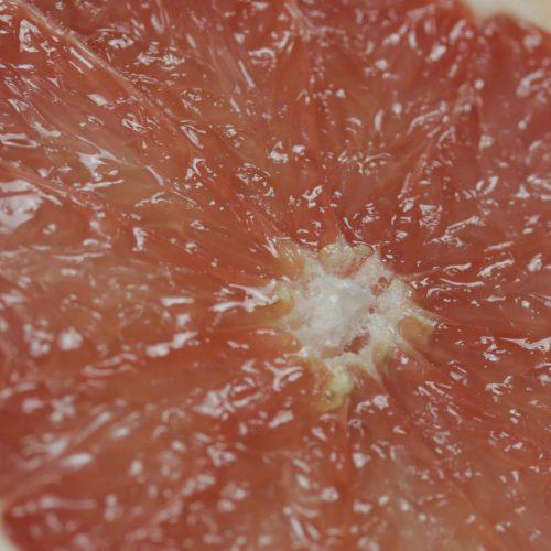 Cholestérol : halte aux idées reçues !