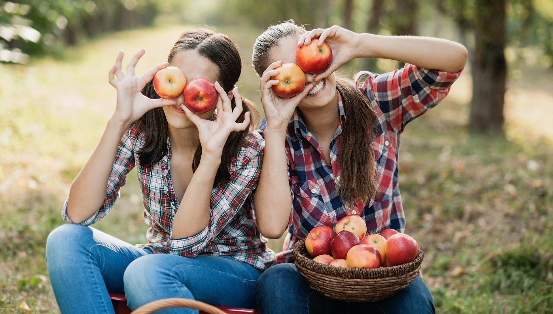 Les fruits et légumes, ils ont tout bon